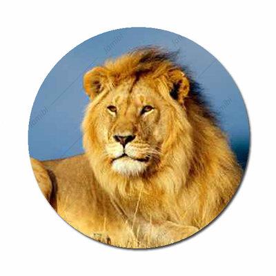 Leeuw flatback button