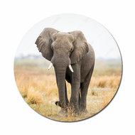 Olifant flatback button